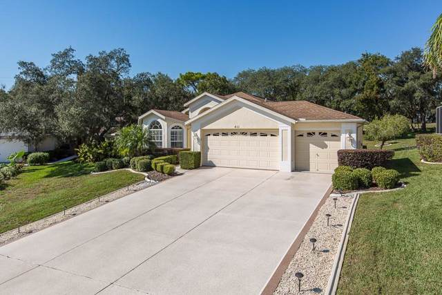 411 Mistwood Court, Spring Hill, FL 34609 (MLS #W7818254) :: Homepride Realty Services