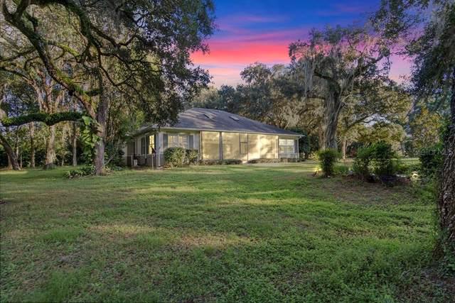 13165 S Mine Trail, Brooksville, FL 34601 (MLS #W7818266) :: Delgado Home Team at Keller Williams