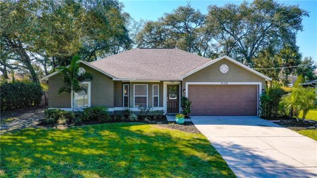 2129 Founder Road, Spring Hill, FL 34606 (MLS #W7818270) :: Homepride Realty Services