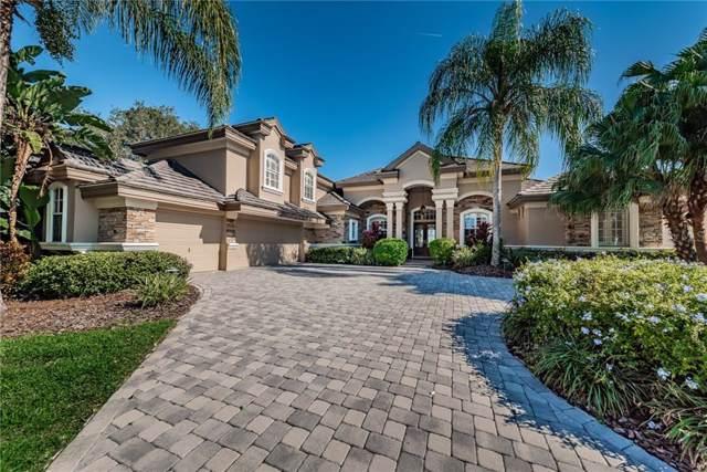 9643 Milano Drive, Trinity, FL 34655 (MLS #W7818316) :: Delgado Home Team at Keller Williams