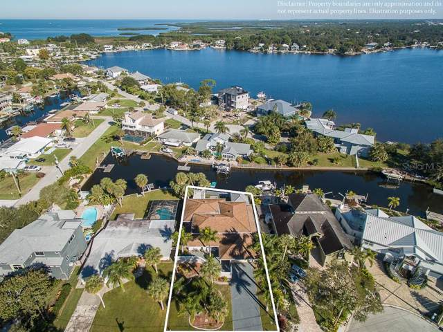 8014 Island Drive, Port Richey, FL 34668 (MLS #W7818324) :: Burwell Real Estate