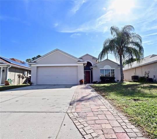 2452 Big Pine Drive, Holiday, FL 34691 (MLS #W7818499) :: Cartwright Realty