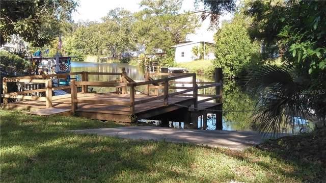 6412 Richard Drive, Weeki Wachee, FL 34607 (MLS #W7818530) :: Dalton Wade Real Estate Group