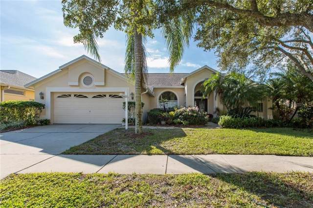 12408 Bristol Commons Circle, Tampa, FL 33626 (MLS #W7818593) :: The Duncan Duo Team