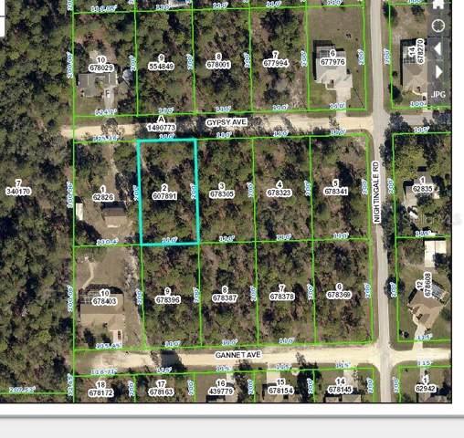 Gypsy Avenue, Weeki Wachee, FL 34614 (MLS #W7818612) :: The Duncan Duo Team