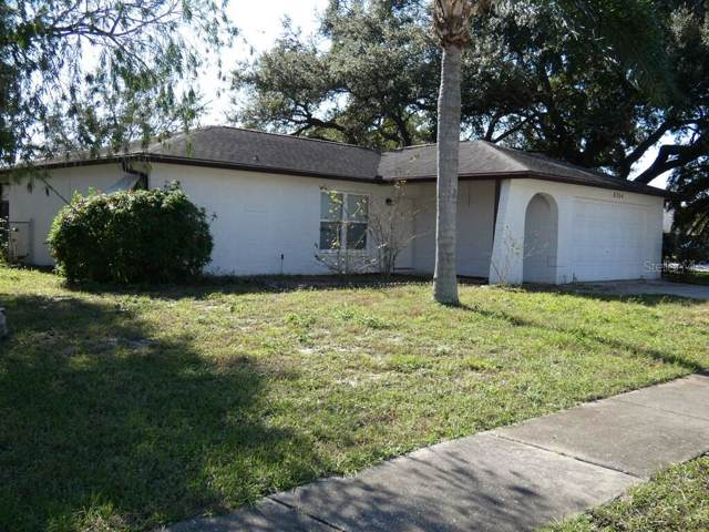 8204 Autumn Oak Avenue, Port Richey, FL 34668 (MLS #W7818613) :: Team Bohannon Keller Williams, Tampa Properties