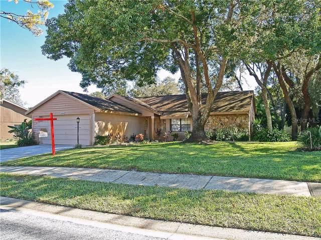 10400 Ravines Drive, New Port Richey, FL 34654 (MLS #W7818624) :: 54 Realty