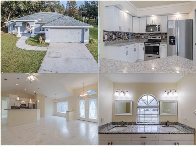 9105 S Zanmar Drive, Floral City, FL 34436 (MLS #W7818625) :: Dalton Wade Real Estate Group