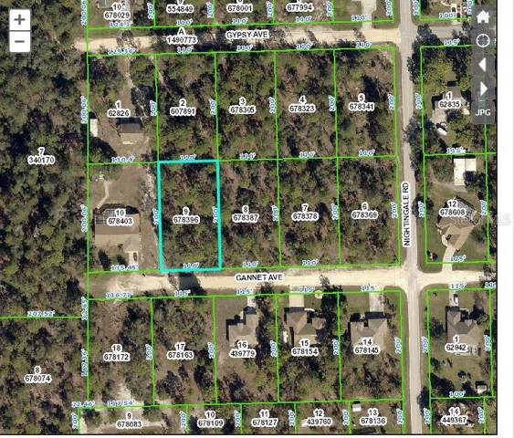 0 Gannet Avenue, Weeki Wachee, FL 34614 (MLS #W7818639) :: Premium Properties Real Estate Services