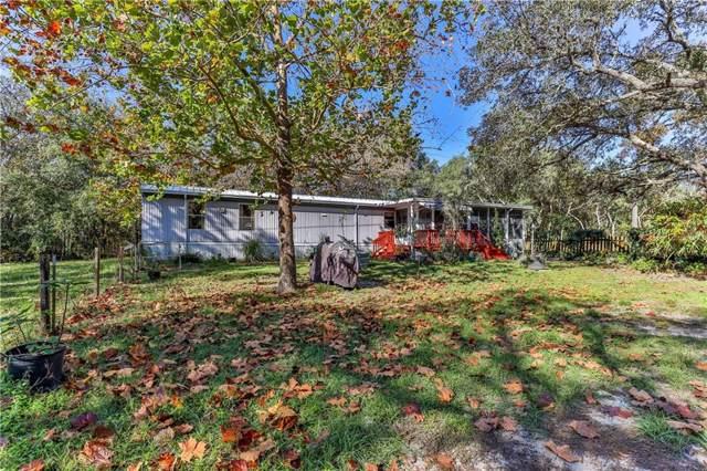 16846 Dalberg Drive, Spring Hill, FL 34610 (MLS #W7818652) :: The Duncan Duo Team