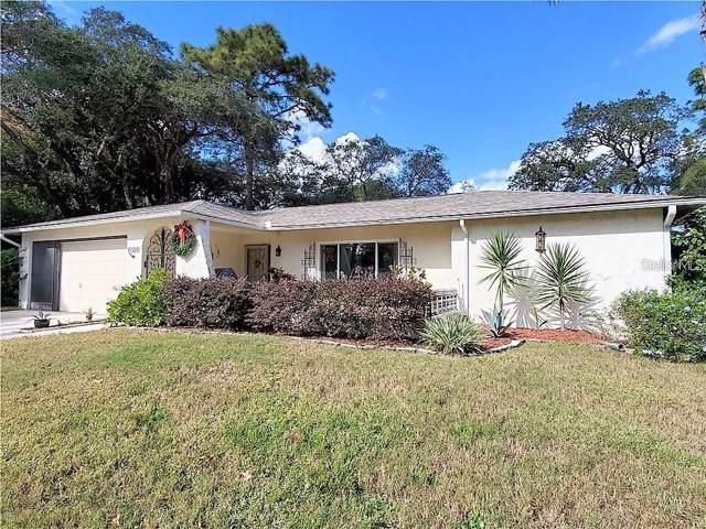 10528 Hillrise Court, Port Richey, FL 34668 (MLS #W7818707) :: CENTURY 21 OneBlue