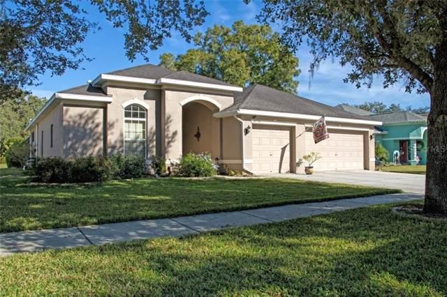 16751 Midsummer Lane, Spring Hill, FL 34610 (MLS #W7818756) :: GO Realty