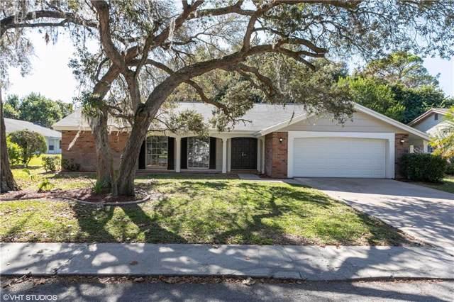 8702 Powderhorn Row, Hudson, FL 34667 (MLS #W7818776) :: Griffin Group