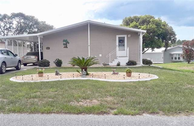 14203 Delsilver Drive, Brooksville, FL 34613 (MLS #W7818783) :: Griffin Group