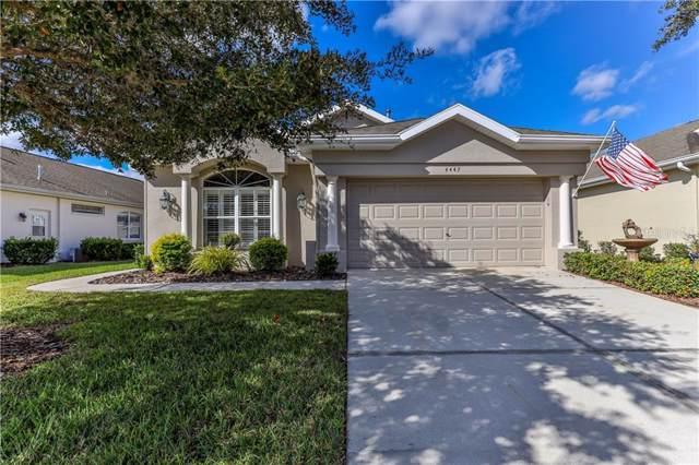 4447 Caliquen Drive, Brooksville, FL 34604 (MLS #W7818784) :: Armel Real Estate