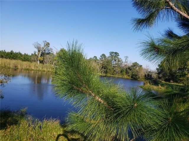 Cobb Road Road, Land O Lakes, FL 34638 (MLS #W7818791) :: The Duncan Duo Team