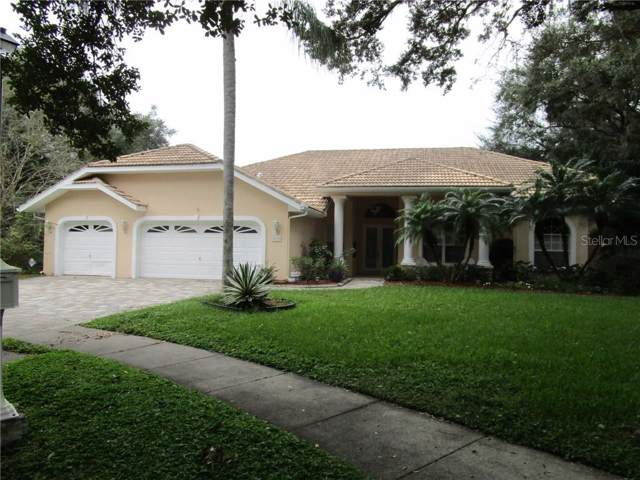 8735 Crescent Forest Boulevard, New Port Richey, FL 34654 (MLS #W7818814) :: The Duncan Duo Team