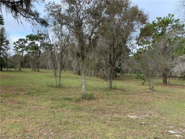 Address Not Published, Brooksville, FL 34604 (MLS #W7818941) :: Rabell Realty Group