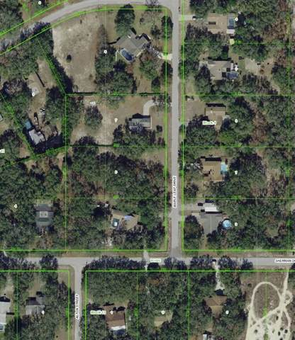 Maple Leaf Ave, Hudson, FL 34667 (MLS #W7819007) :: McConnell and Associates