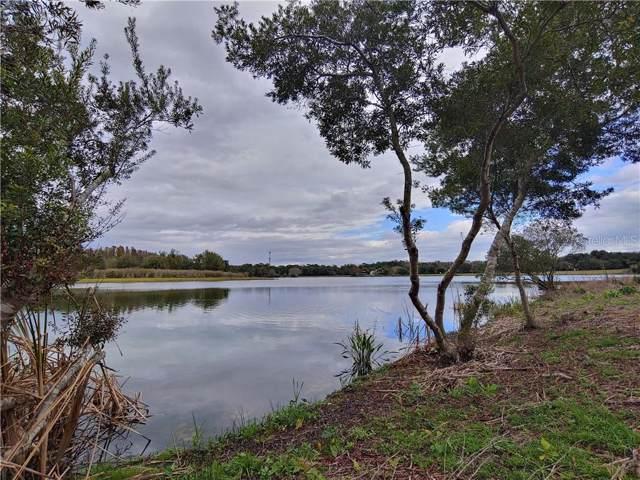 Tarpon Springs, Odessa, FL 33556 (MLS #W7819149) :: Bustamante Real Estate