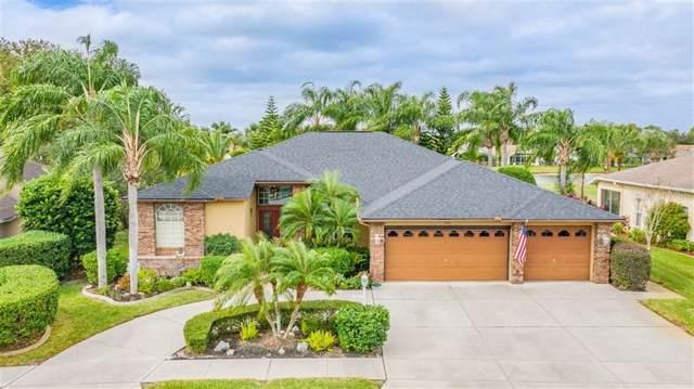1141 Alanbrooke Street, Trinity, FL 34655 (MLS #W7819283) :: Lock & Key Realty