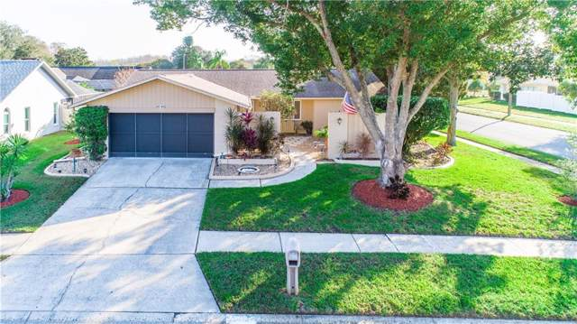 4646 Weasel Drive, New Port Richey, FL 34653 (MLS #W7819421) :: Griffin Group