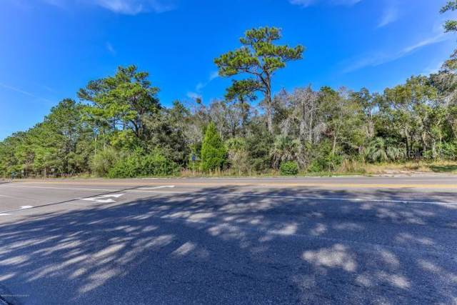 17485 Spring Hill Drive, Brooksville, FL 34604 (MLS #W7819473) :: Lockhart & Walseth Team, Realtors