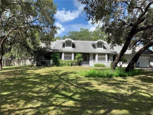 18607 Oak Way Drive, Hudson, FL 34667 (MLS #W7819614) :: 54 Realty