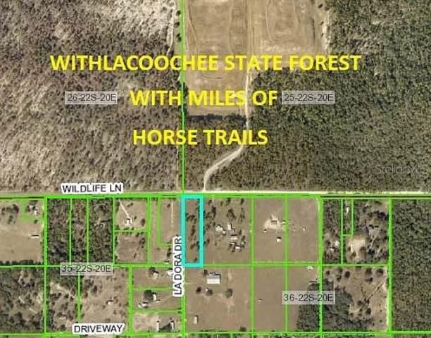 00 Wildlife Lane, Brooksville, FL 34602 (MLS #W7819633) :: 54 Realty