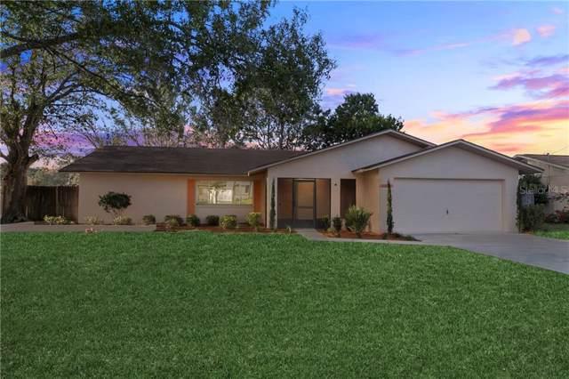 11215 Archer Avenue, Spring Hill, FL 34608 (MLS #W7819671) :: 54 Realty