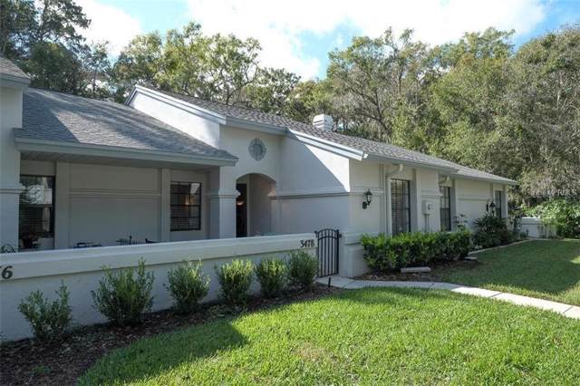 3478 Killdeer Place, Palm Harbor, FL 34685 (MLS #W7819728) :: Griffin Group