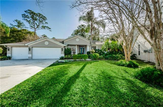 7960 Roundelay Drive, New Port Richey, FL 34654 (MLS #W7819774) :: Team Bohannon Keller Williams, Tampa Properties