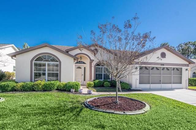 6246 Cardinal Crest Drive, New Port Richey, FL 34655 (MLS #W7819777) :: Bustamante Real Estate