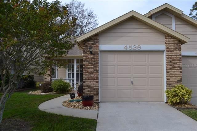 4529 Glen Hollow, New Port Richey, FL 34653 (MLS #W7819780) :: Gate Arty & the Group - Keller Williams Realty Smart