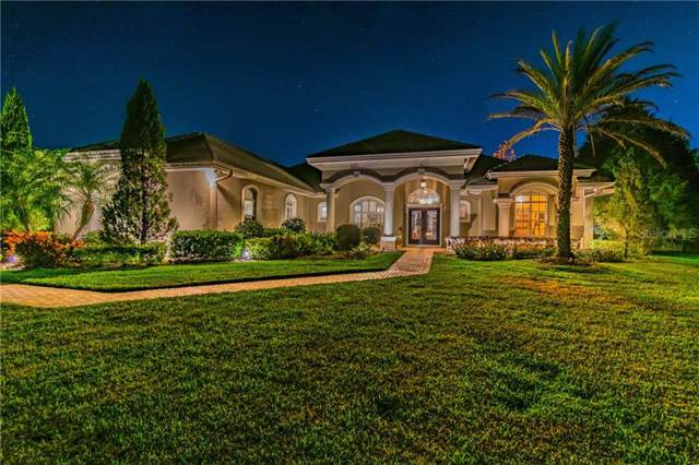 10607 Echo Lake Drive, Odessa, FL 33556 (MLS #W7819887) :: Team Bohannon Keller Williams, Tampa Properties