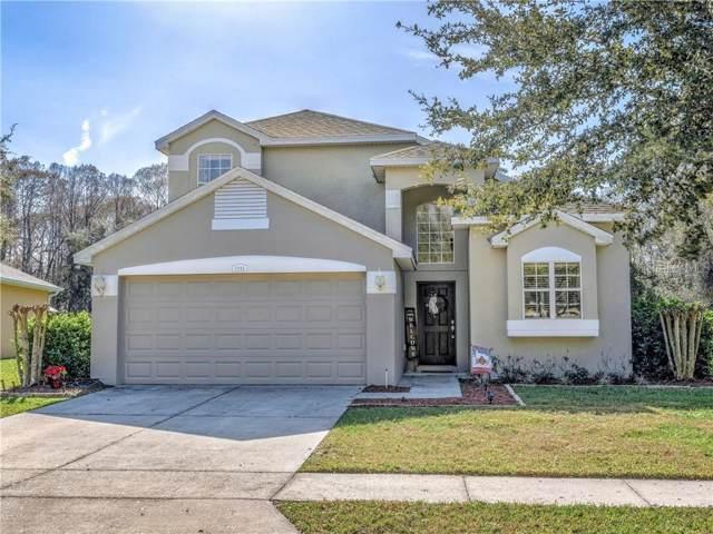 11944 Palm Bay Court, New Port Richey, FL 34654 (MLS #W7819891) :: Pristine Properties