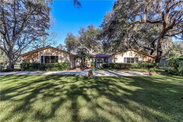 15153 Kittrell Drive, Spring Hill, FL 34610 (MLS #W7819925) :: Charles Rutenberg Realty