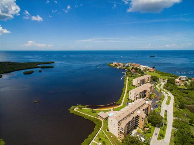 4550 Bay Boulevard #1225, Port Richey, FL 34668 (MLS #W7819939) :: Zarghami Group