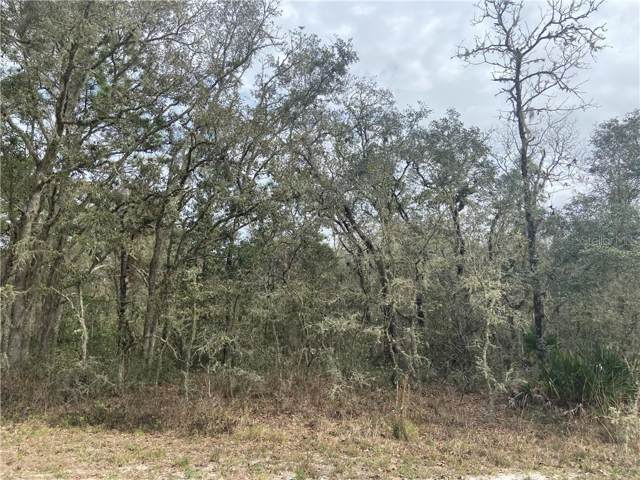 7464 Atwood Drive, Webster, FL 33597 (MLS #W7819962) :: Cartwright Realty