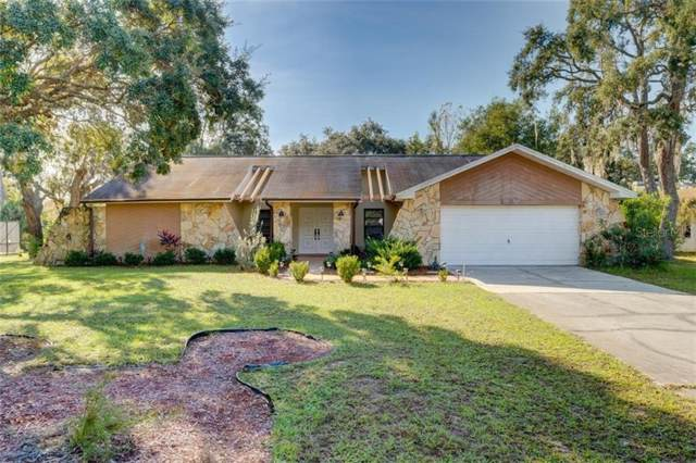 7924 Chaucer Drive, Weeki Wachee, FL 34607 (MLS #W7820007) :: Zarghami Group