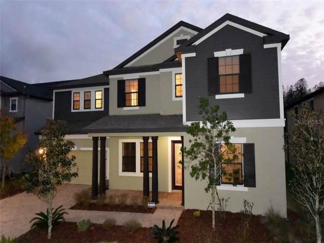 13416 Batten Lane, Odessa, FL 33556 (MLS #W7820050) :: 54 Realty