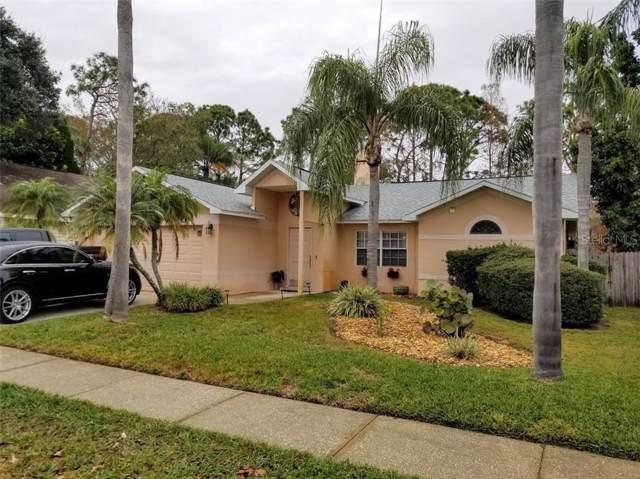 7127 Otter Creek Drive, New Port Richey, FL 34655 (MLS #W7820064) :: Team Bohannon Keller Williams, Tampa Properties
