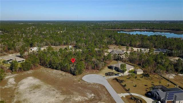 Pantera Loop, Weeki Wachee, FL 34613 (MLS #W7820339) :: Griffin Group