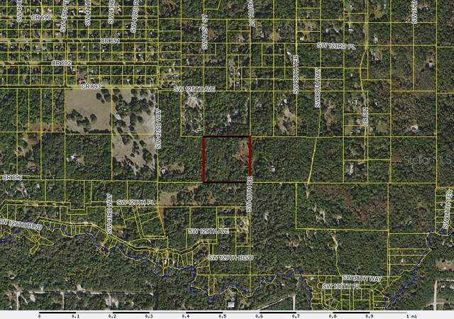 00 SW 40TH Drive, Webster, FL 33597 (MLS #W7820360) :: Icon Premium Realty