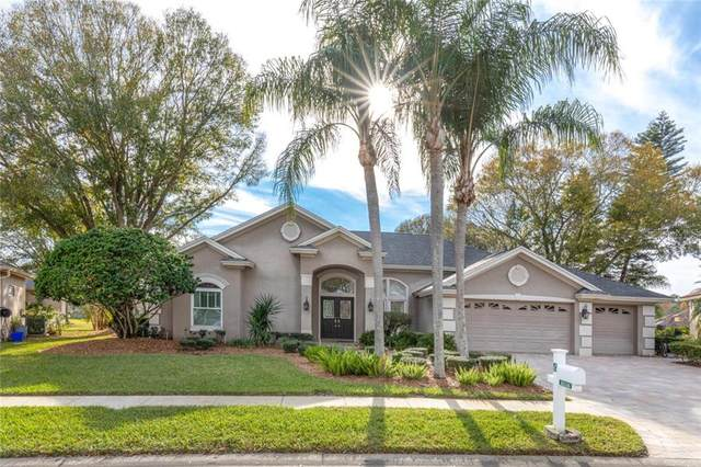 16316 Birkdale Drive, Odessa, FL 33556 (MLS #W7820391) :: Griffin Group