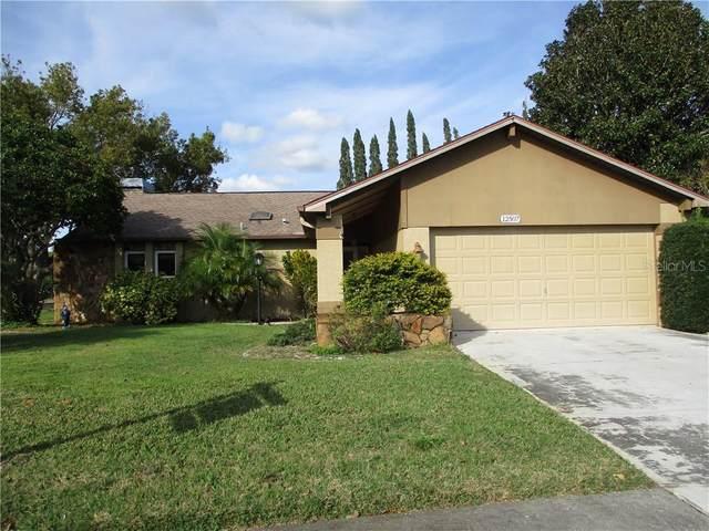 12507 Smokey Drive, Hudson, FL 34669 (MLS #W7820483) :: Cartwright Realty