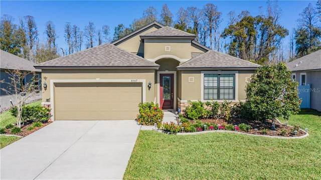 8507 May Port Court, Land O Lakes, FL 34638 (MLS #W7820517) :: 54 Realty