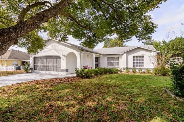 2235 Estill Avenue, Spring Hill, FL 34609 (MLS #W7820665) :: Lovitch Group, LLC