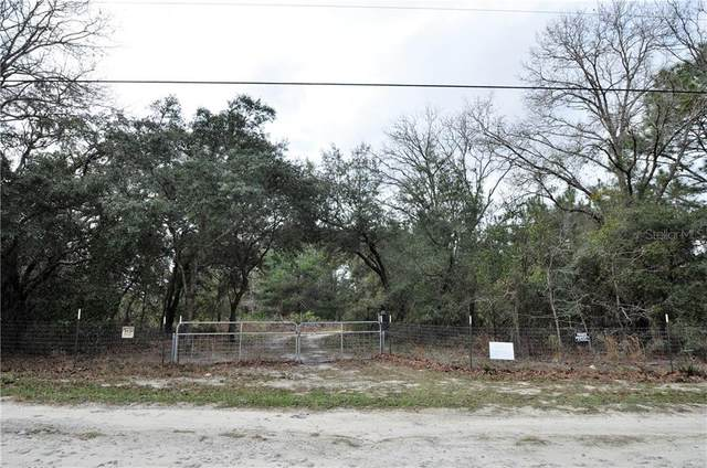 7233 S Sunnyview Point, Homosassa, FL 34446 (MLS #W7820670) :: Pristine Properties