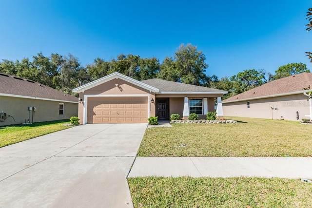 13315 Meadow Golf Avenue, Hudson, FL 34669 (MLS #W7820682) :: Cartwright Realty